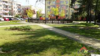 https://lokum.mielec.pl/oferta LOKUM Nieruchomości Mielec Przestronne mieszkanie w Połańcu Połaniec