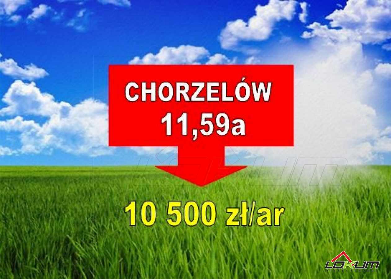 fotografia oferty  Działka budowlana Chorzelówul