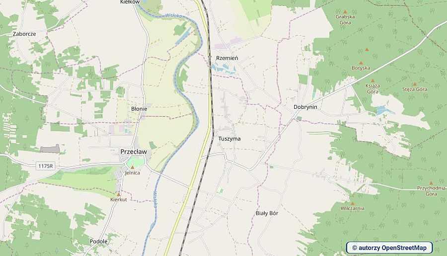 lokalizacja oferty 3117 LOKUM Nieruchomości Mielec na mapach OpenStreetMap